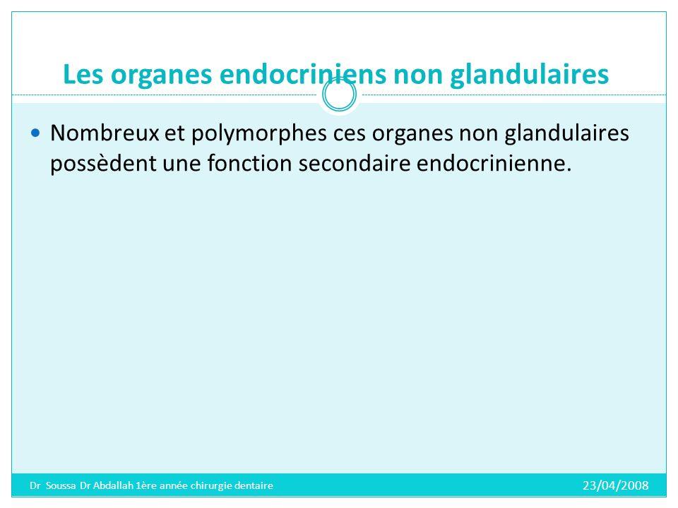 Les organes endocriniens non glandulaires Le tube digestif Le cerveau Le rein Le placenta Les para-ganglions (structures disséminées, semblables a la medulla de la glande surrénale du point de vue fonctionnel et semblent être en rapport avec le parasympathique, comprennent les ganglions sympathiques, carotidiens, jugulaires, coccygiens, les corps para-aortiques et pulmonaires).