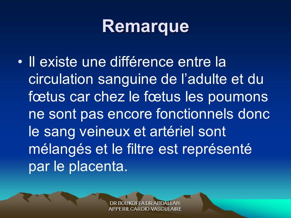 Remarque Il existe une différence entre la circulation sanguine de ladulte et du fœtus car chez le fœtus les poumons ne sont pas encore fonctionnels d