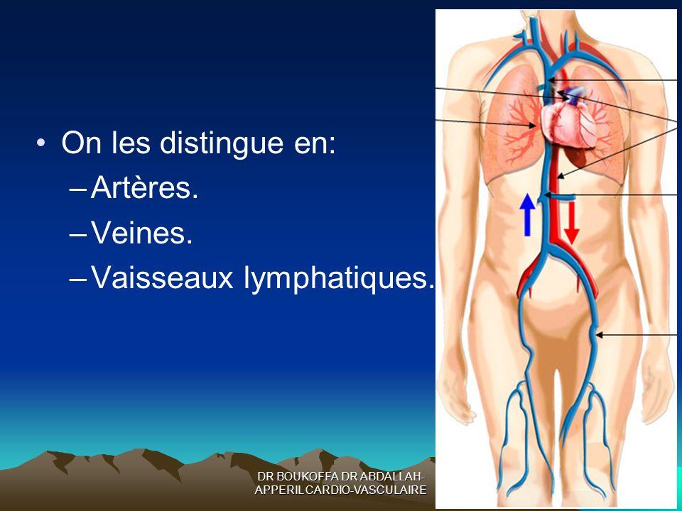DR BOUKOFFA DR ABDALLAH- APPERIL CARDIO-VASCULAIRE On les distingue en: –Artères. –Veines. –Vaisseaux lymphatiques.