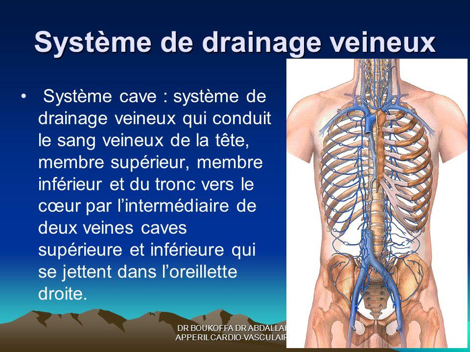 DR BOUKOFFA DR ABDALLAH- APPERIL CARDIO-VASCULAIRE Système de drainage veineux Système cave : système de drainage veineux qui conduit le sang veineux