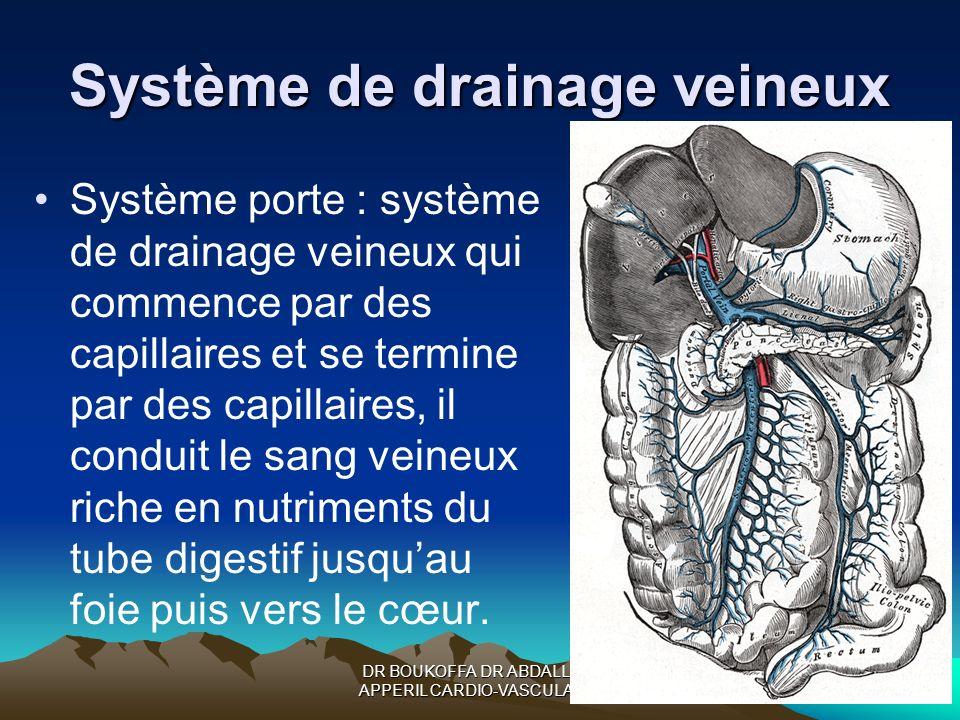 DR BOUKOFFA DR ABDALLAH- APPERIL CARDIO-VASCULAIRE Système de drainage veineux Système porte : système de drainage veineux qui commence par des capill