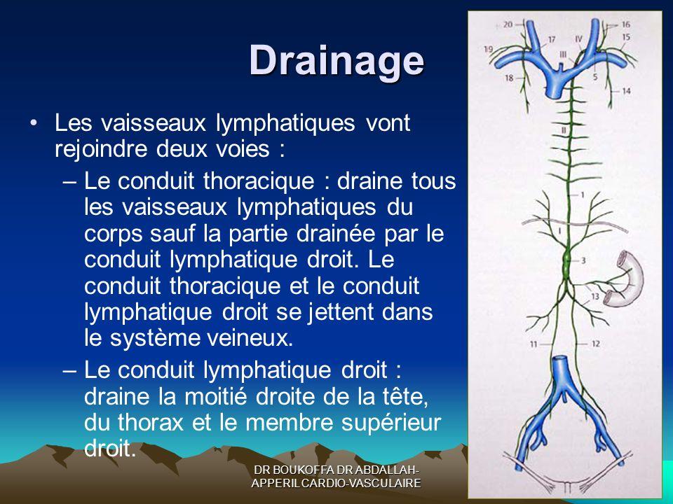 DR BOUKOFFA DR ABDALLAH- APPERIL CARDIO-VASCULAIRE Drainage Les vaisseaux lymphatiques vont rejoindre deux voies : –Le conduit thoracique : draine tou