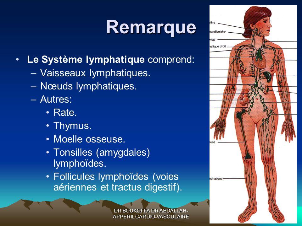 DR BOUKOFFA DR ABDALLAH- APPERIL CARDIO-VASCULAIRE Remarque Le Système lymphatique comprend: –Vaisseaux lymphatiques. –Nœuds lymphatiques. –Autres: Ra