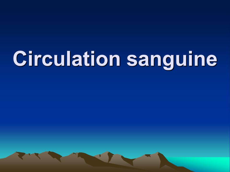 DR BOUKOFFA DR ABDALLAH- APPERIL CARDIO-VASCULAIRE La circulation sanguine peut être subdivisée en deux circulations : –Petite circulation.