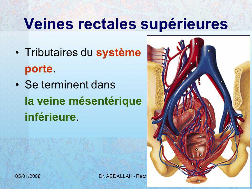 05/01/2008Dr. ABDALLAH - Rectum19 Veines rectales supérieures Tributaires du système porte. Se terminent dans la veine mésentérique inférieure.