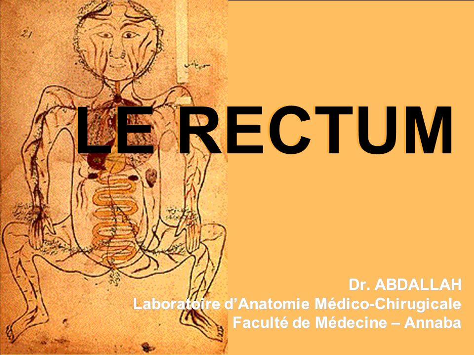 LE RECTUM Dr. ABDALLAH Laboratoire dAnatomie Médico-Chirugicale Faculté de Médecine – Annaba