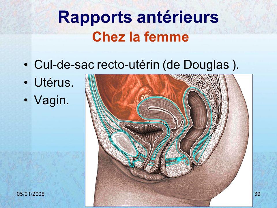 05/01/2008Dr. ABDALLAH - Rectum39 Rapports antérieurs Chez la femme Cul-de-sac recto-utérin (de Douglas ). Utérus. Vagin.