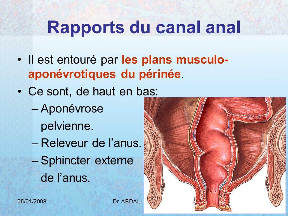 05/01/2008Dr. ABDALLAH - Rectum48 Rapports du canal anal Il est entouré par les plans musculo- aponévrotiques du périnée. Ce sont, de haut en bas: –Ap
