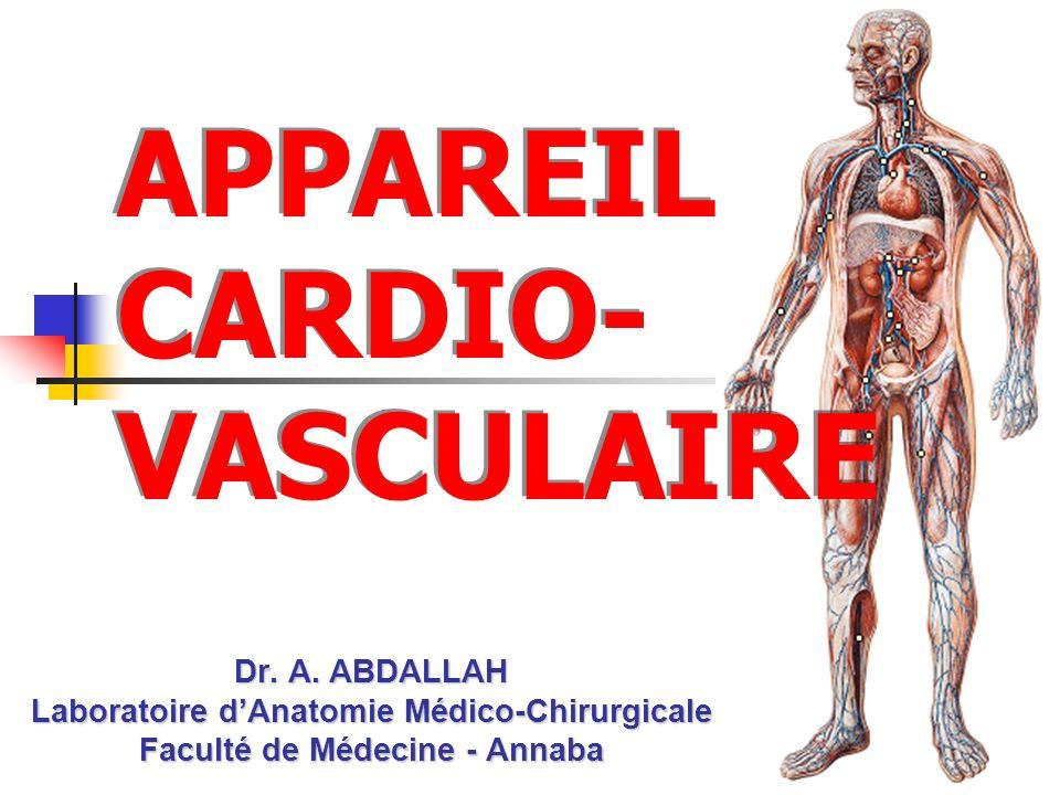 APPAREIL CARDIO- VASCULAIRE Dr. A. ABDALLAH Laboratoire dAnatomie Médico-Chirurgicale Faculté de Médecine - Annaba