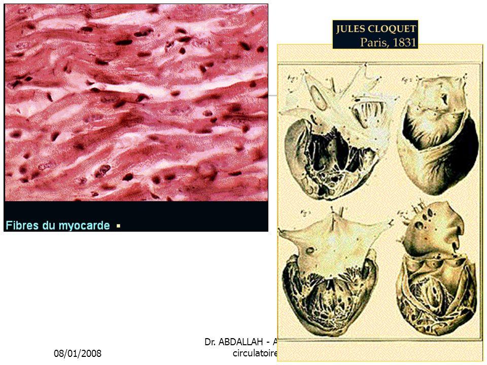 08/01/2008 Dr. ABDALLAH - Appareil circulatoire24