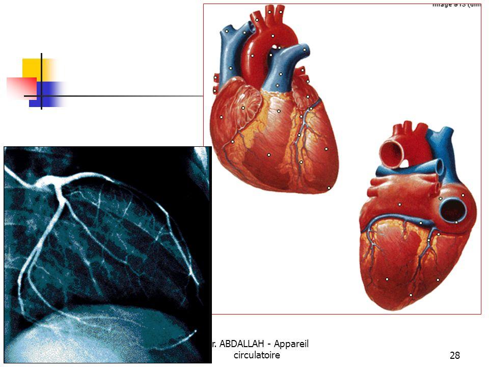 08/01/2008 Dr. ABDALLAH - Appareil circulatoire28