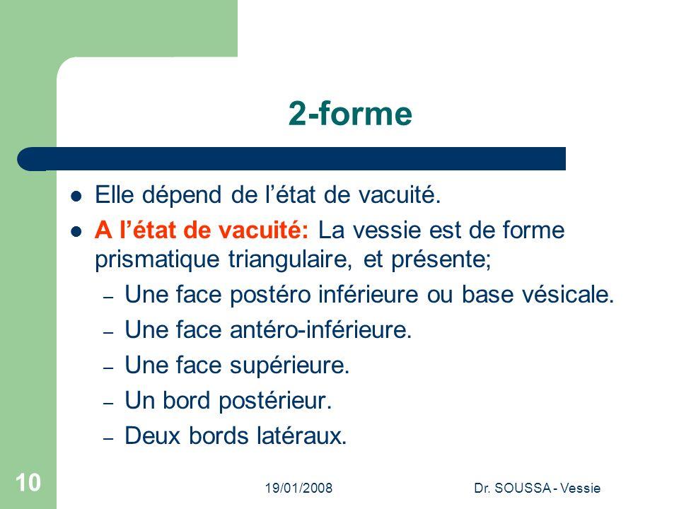 19/01/2008Dr.SOUSSA - Vessie 10 2-forme Elle dépend de létat de vacuité.
