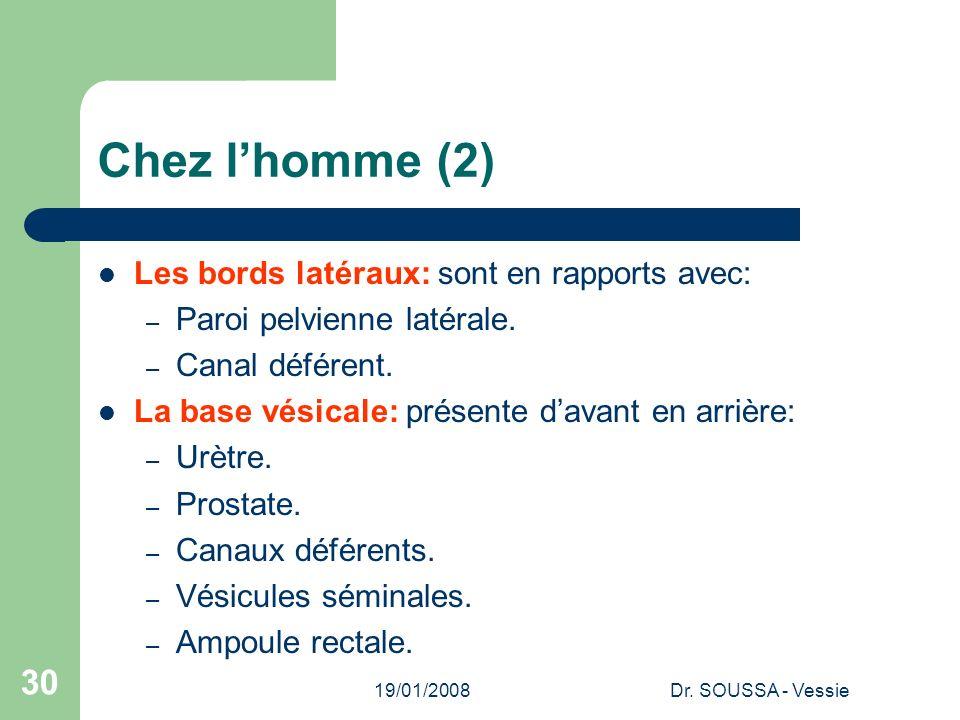 19/01/2008Dr. SOUSSA - Vessie 30 Chez lhomme (2) Les bords latéraux: sont en rapports avec: – Paroi pelvienne latérale. – Canal déférent. La base vési