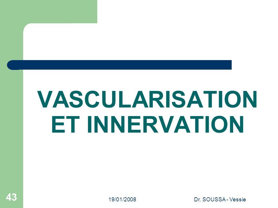 19/01/2008Dr. SOUSSA - Vessie 43 VASCULARISATION ET INNERVATION