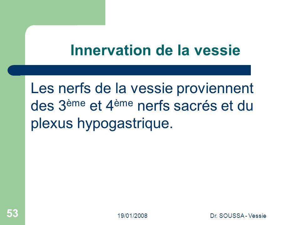 19/01/2008Dr. SOUSSA - Vessie 53 Innervation de la vessie Les nerfs de la vessie proviennent des 3 ème et 4 ème nerfs sacrés et du plexus hypogastriqu