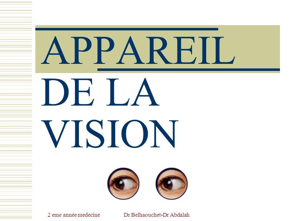 2 eme année medecine Dr Belhaouchet-Dr Abdalah Nerfs Nerf sensoriel: nerf optique (II).