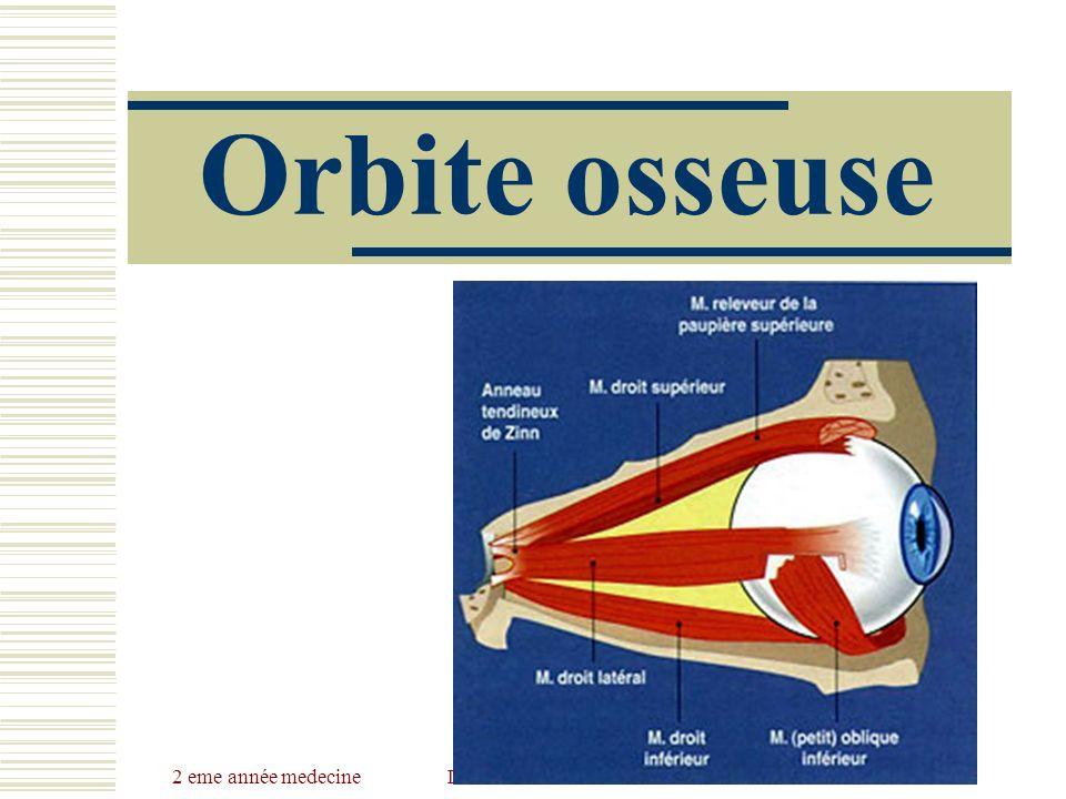 2 eme année medecineDr Belhaouchet-Dr Abdalah Orbite osseuse
