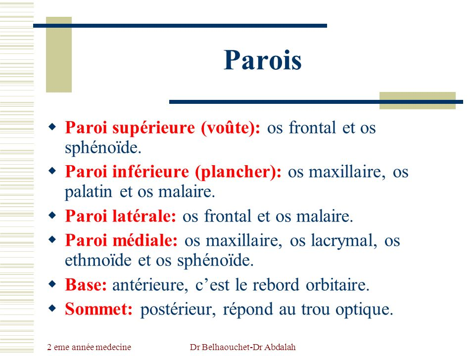 2 eme année medecine Dr Belhaouchet-Dr Abdalah Parois Paroi supérieure (voûte): os frontal et os sphénoïde. Paroi inférieure (plancher): os maxillaire