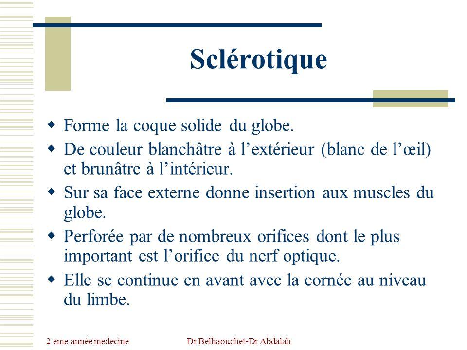 2 eme année medecine Dr Belhaouchet-Dr Abdalah Sclérotique Forme la coque solide du globe. De couleur blanchâtre à lextérieur (blanc de lœil) et brunâ