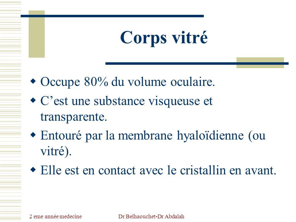 2 eme année medecine Dr Belhaouchet-Dr Abdalah Corps vitré Occupe 80% du volume oculaire. Cest une substance visqueuse et transparente. Entouré par la