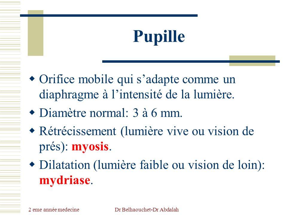 2 eme année medecine Dr Belhaouchet-Dr Abdalah Pupille Orifice mobile qui sadapte comme un diaphragme à lintensité de la lumière. Diamètre normal: 3 à