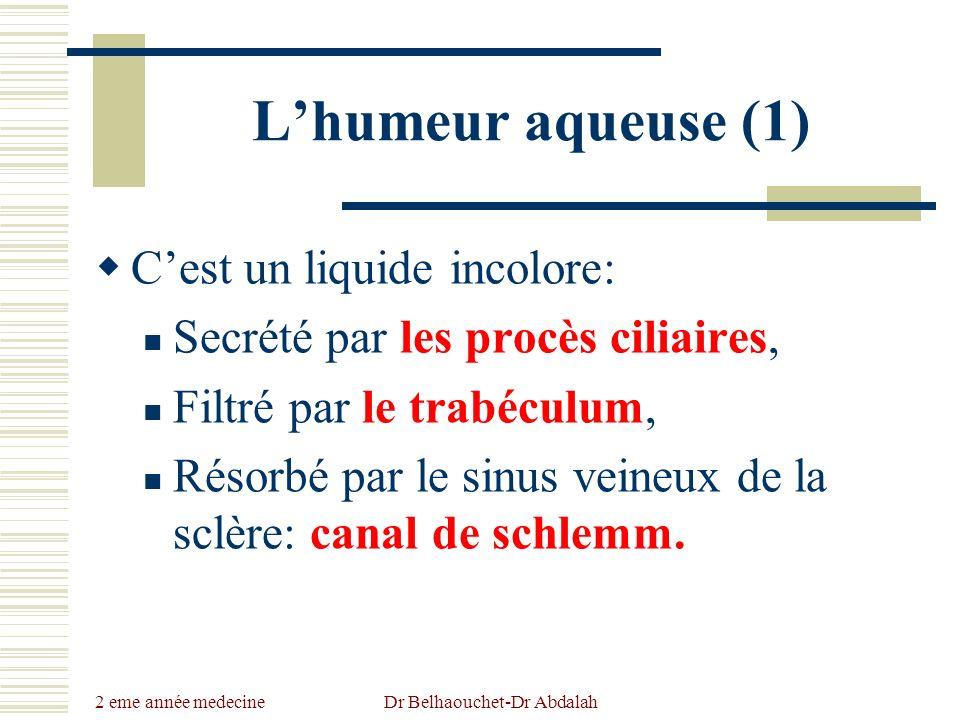 2 eme année medecine Dr Belhaouchet-Dr Abdalah Lhumeur aqueuse (1) Cest un liquide incolore: Secrété par les procès ciliaires, Filtré par le trabéculu