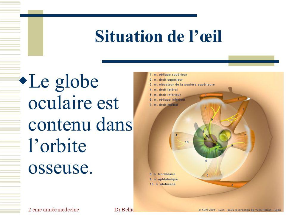 2 eme année medecine Dr Belhaouchet-Dr Abdalah Situation de lœil Le globe oculaire est contenu dans lorbite osseuse.