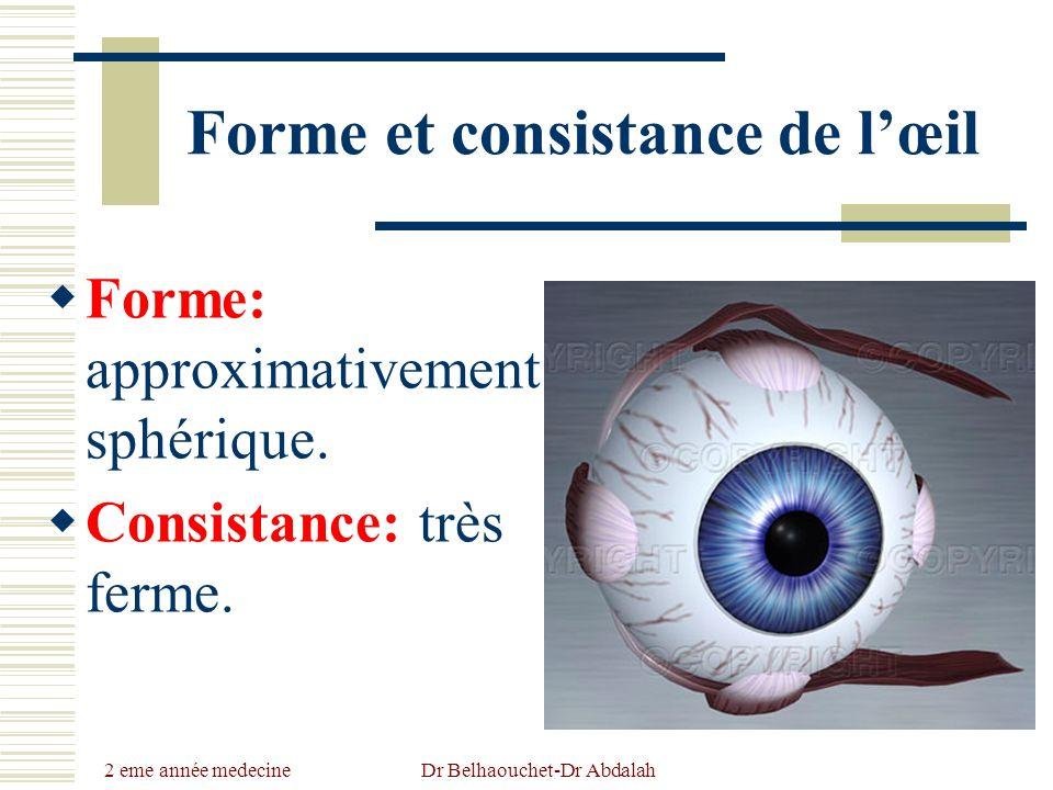 2 eme année medecine Dr Belhaouchet-Dr Abdalah Forme et consistance de lœil Forme: approximativement sphérique. Consistance: très ferme.
