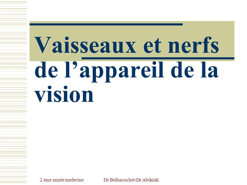 2 eme année medecineDr Belhaouchet-Dr Abdalah Vaisseaux et nerfs de lappareil de la vision