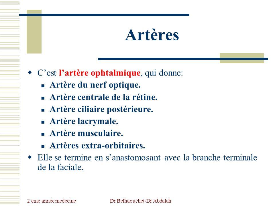 2 eme année medecine Dr Belhaouchet-Dr Abdalah Artères Cest lartère ophtalmique, qui donne: Artère du nerf optique. Artère centrale de la rétine. Artè