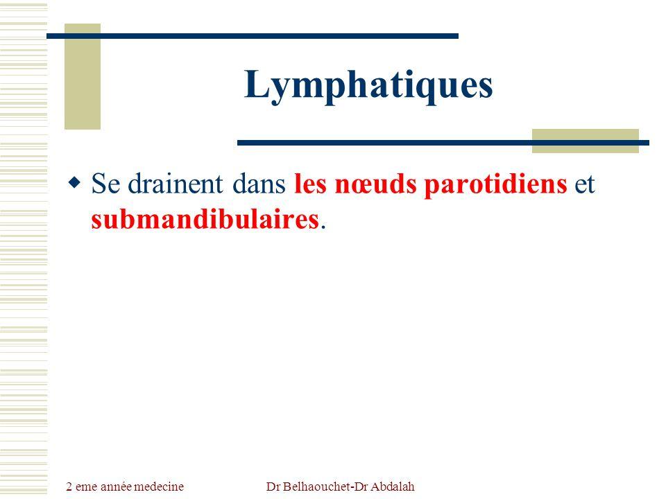 2 eme année medecine Dr Belhaouchet-Dr Abdalah Lymphatiques Se drainent dans les nœuds parotidiens et submandibulaires.