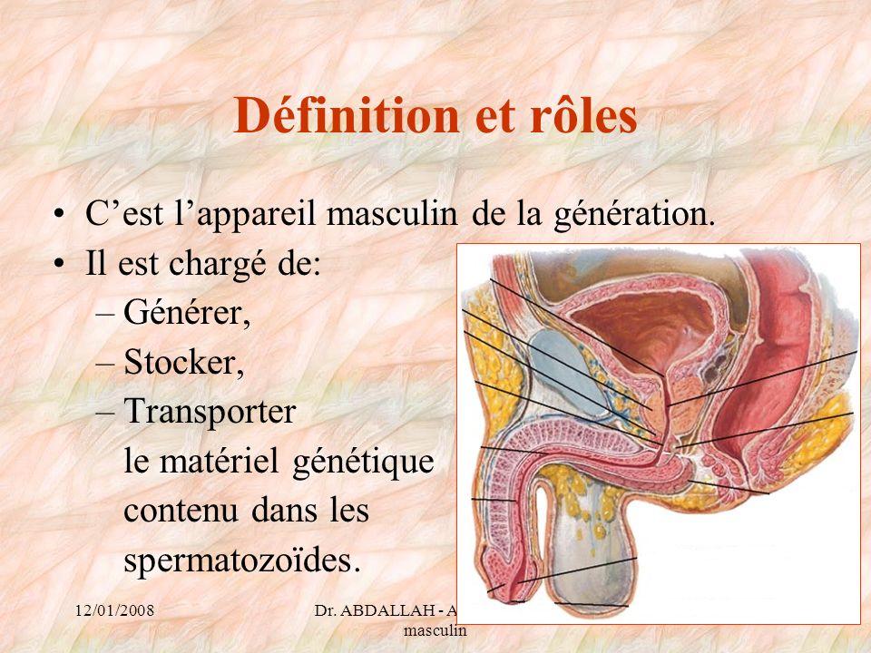 12/01/2008Dr. ABDALLAH - Appareil génital masculin 4 Définition et rôles Cest lappareil masculin de la génération. Il est chargé de: –Générer, –Stocke