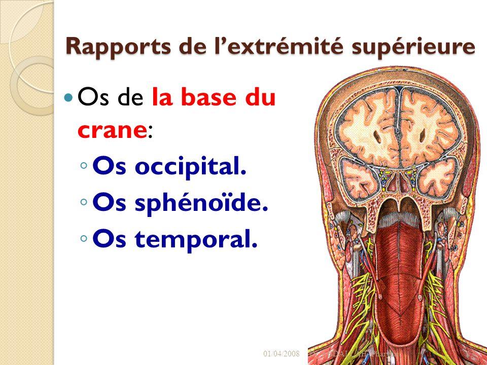 Rapports de lextrémité supérieure Os de la base du crane: Os occipital. Os sphénoïde. Os temporal. 01/04/2008Dr. ABDALLAH- Pharynx13