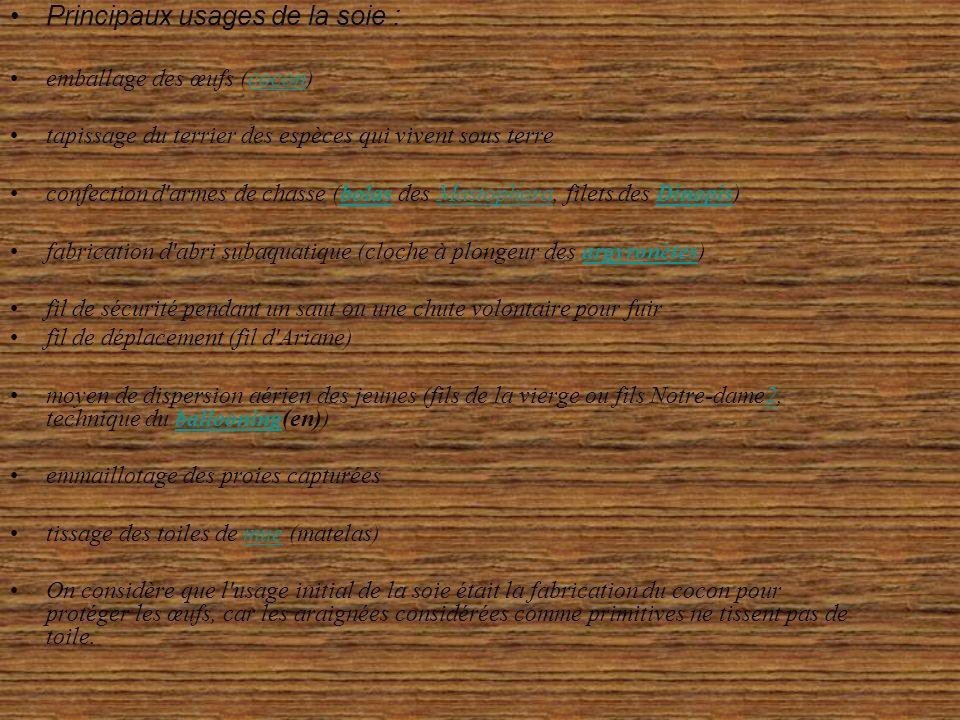 Principaux usages de la soie : emballage des œufs (cocon)cocon tapissage du terrier des espèces qui vivent sous terre confection d armes de chasse (bolas des Mastophora, filets des Dinopis)bolasMastophoraDinopis fabrication d abri subaquatique (cloche à plongeur des argyronètes)argyronètes fil de sécurité pendant un saut ou une chute volontaire pour fuir fil de déplacement (fil d Ariane) moyen de dispersion aérien des jeunes (fils de la vierge ou fils Notre-dame2, technique du ballooning(en))2ballooning emmaillotage des proies capturées tissage des toiles de mue (matelas)mue On considère que l usage initial de la soie était la fabrication du cocon pour protéger les œufs, car les araignées considérées comme primitives ne tissent pas de toile.
