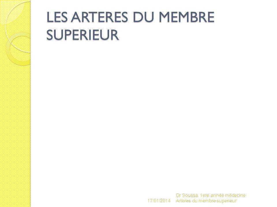 LES ARTERES DU MEMBRE SUPERIEUR 17/01/2014 Dr Soussa 1ere année médecine Artères du membre superieur