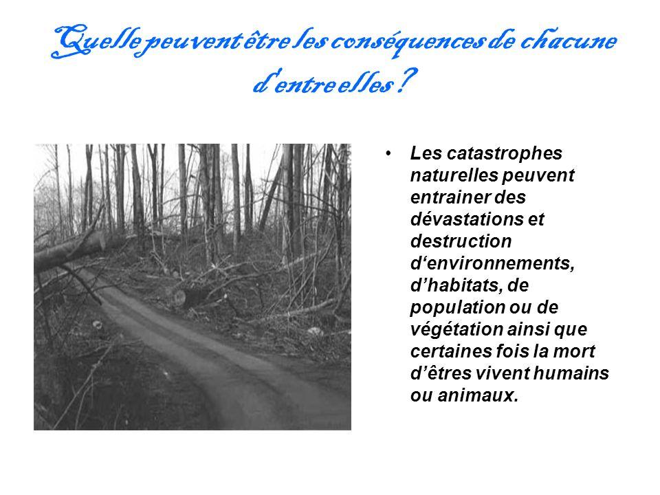 Quelle peuvent être les conséquences de chacune d'entre elles? Les catastrophes naturelles peuvent entrainer des dévastations et destruction denvironn