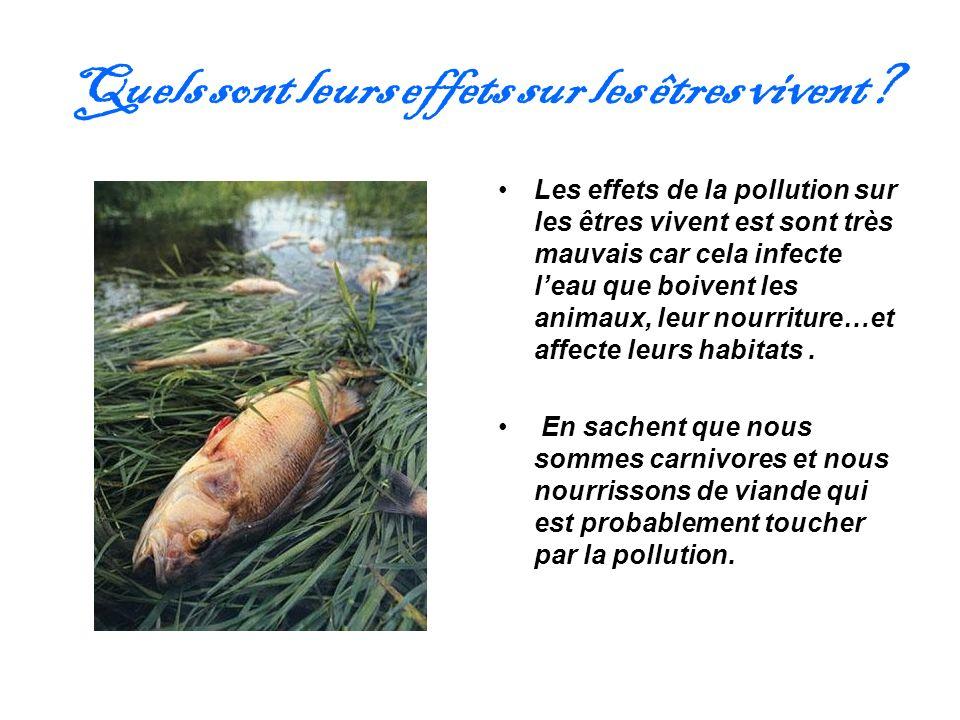 Quels sont leurs effets sur les êtres vivent? Les effets de la pollution sur les êtres vivent est sont très mauvais car cela infecte leau que boivent