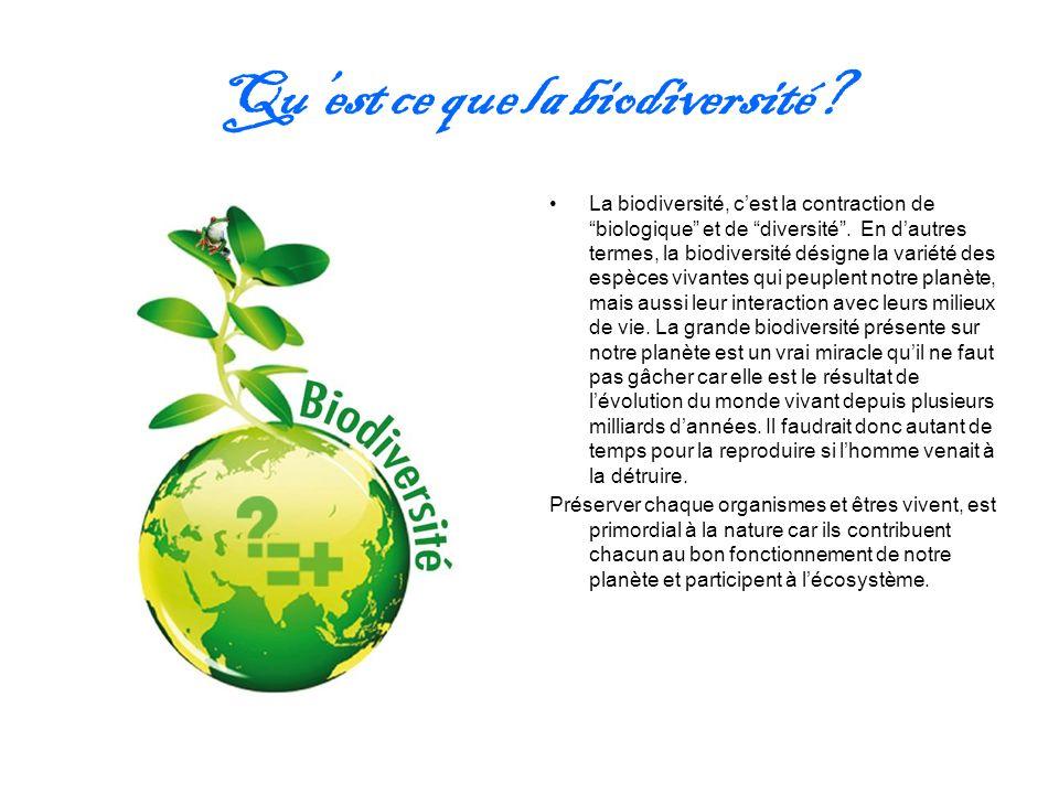Quest ce que la biodiversité? La biodiversité, cest la contraction de biologique et de diversité. En dautres termes, la biodiversité désigne la variét