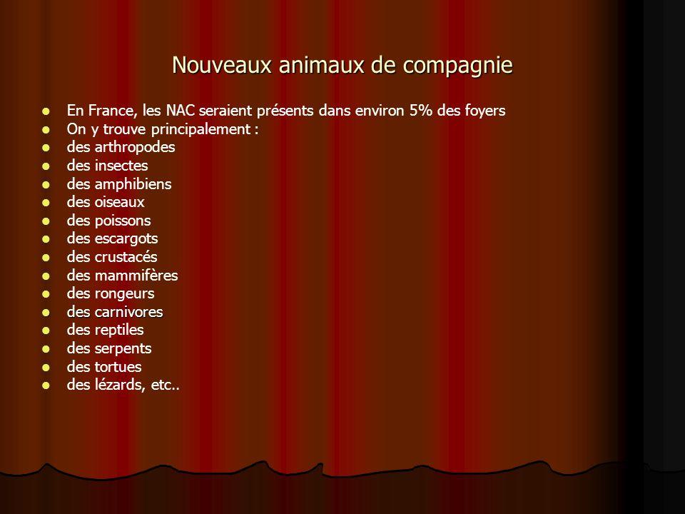 Nouveaux animaux de compagnie En France, les NAC seraient présents dans environ 5% des foyers On y trouve principalement : des arthropodes des insecte