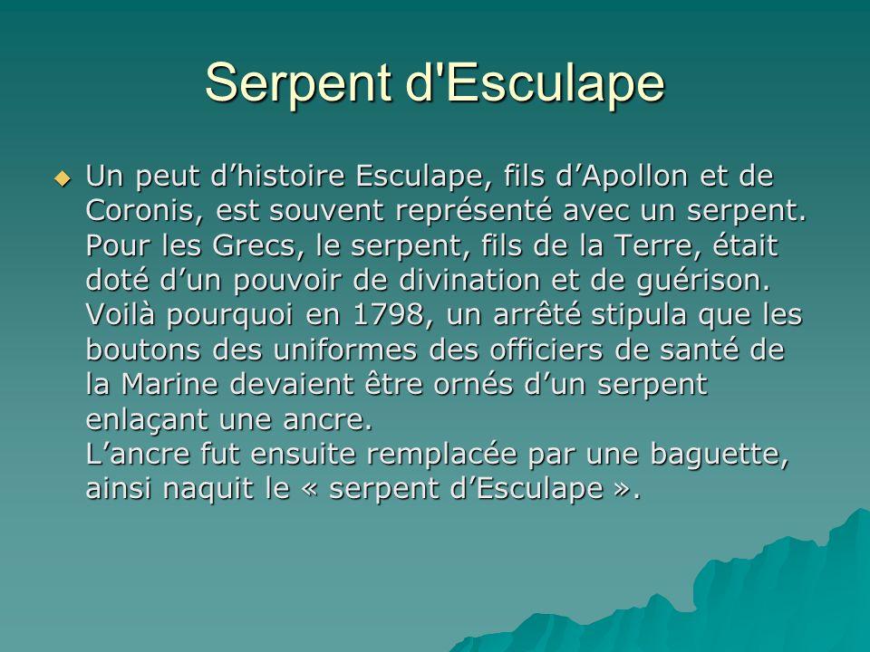 Serpent d'Esculape Un peut dhistoire Esculape, fils dApollon et de Coronis, est souvent représenté avec un serpent. Pour les Grecs, le serpent, fils d
