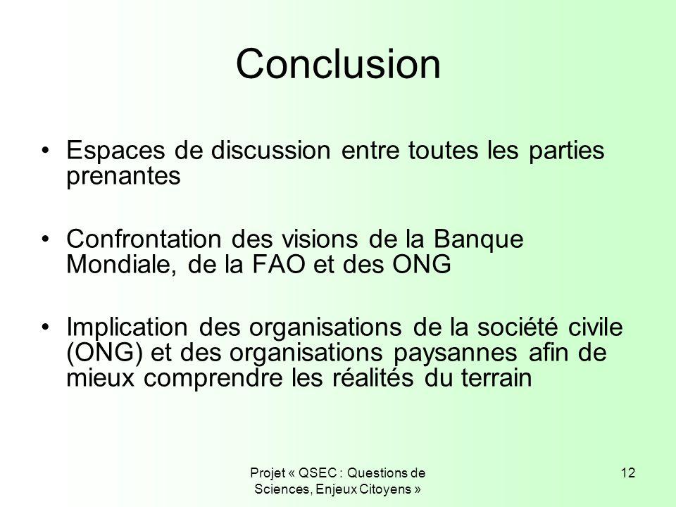Projet « QSEC : Questions de Sciences, Enjeux Citoyens » 12 Conclusion Espaces de discussion entre toutes les parties prenantes Confrontation des visi