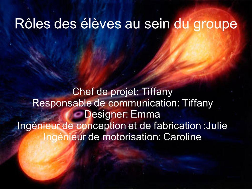 Rôles des élèves au sein du groupe Chef de projet: Tiffany Responsable de communication: Tiffany Designer: Emma Ingénieur de conception et de fabricat