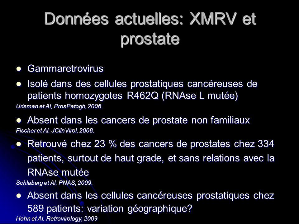 Données actuelles: XMRV et prostate Gammaretrovirus Gammaretrovirus Isolé dans des cellules prostatiques cancéreuses de patients homozygotes R462Q (RN