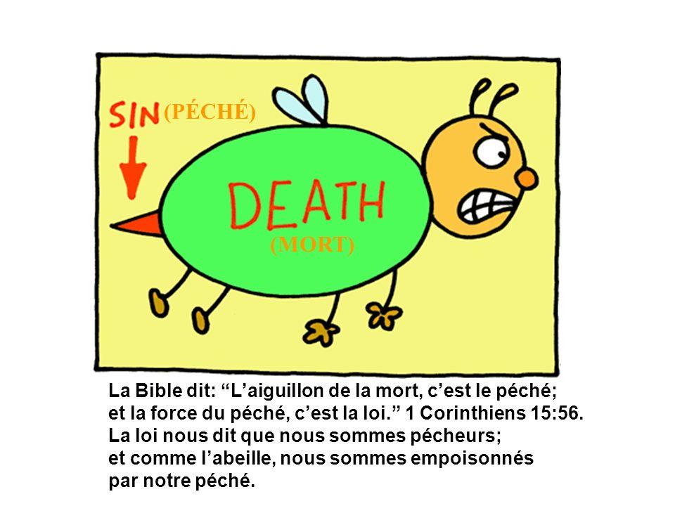 La Bible dit: Laiguillon de la mort, cest le péché; et la force du péché, cest la loi. 1 Corinthiens 15:56. La loi nous dit que nous sommes pécheurs;