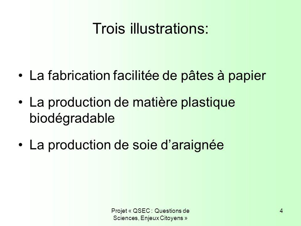 Projet « QSEC : Questions de Sciences, Enjeux Citoyens » 4 Trois illustrations: La fabrication facilitée de pâtes à papier La production de matière pl