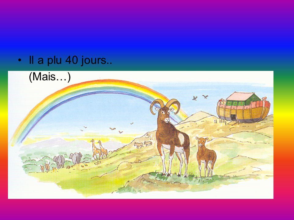 Dieu fait paraître les arcs en ciel preuve que ses promesses sont vraies.