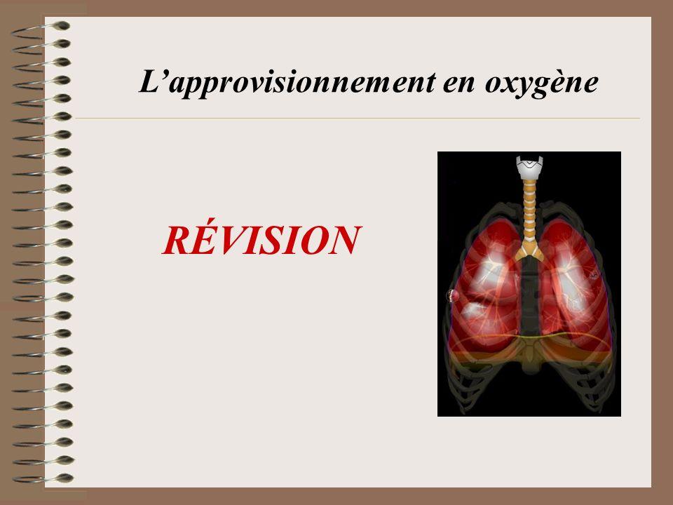 RÉVISION Lapprovisionnement en oxygène