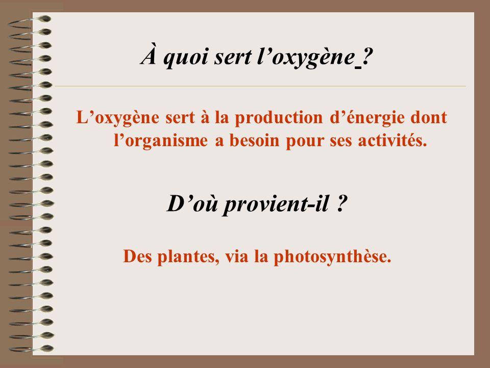 À quoi sert loxygène ? Loxygène sert à la production dénergie dont lorganisme a besoin pour ses activités. Doù provient-il ? Des plantes, via la photo