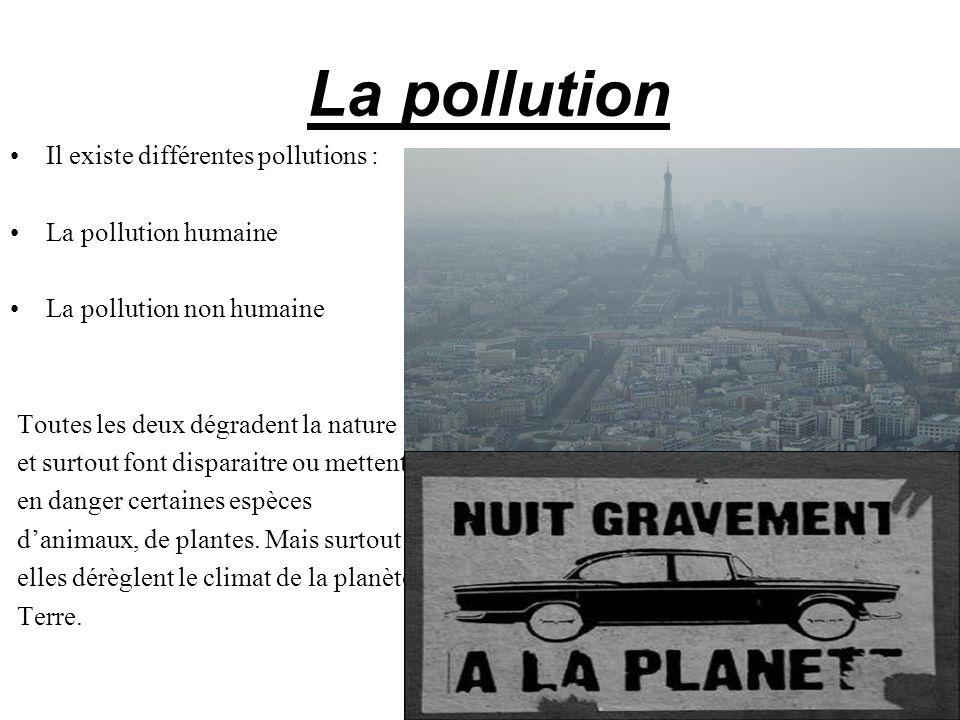 La pollution Il existe différentes pollutions : La pollution humaine La pollution non humaine Toutes les deux dégradent la nature et surtout font disp