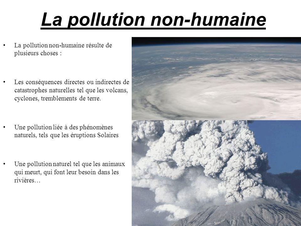 La pollution non-humaine La pollution non-humaine résulte de plusieurs choses : Les conséquences directes ou indirectes de catastrophes naturelles tel